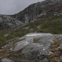 Artscape.Nordland.43